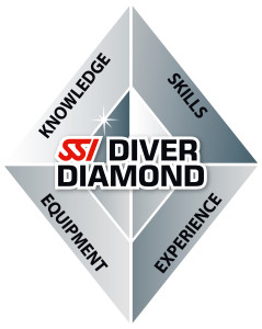 Diver-Diamond-2014-TEXT